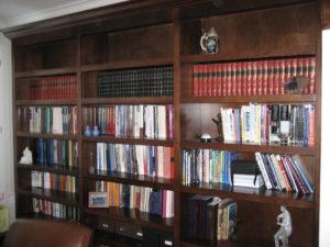 Library / Media Niche